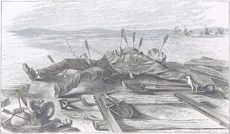 Buffalo Land by W. E. Webb, 1873