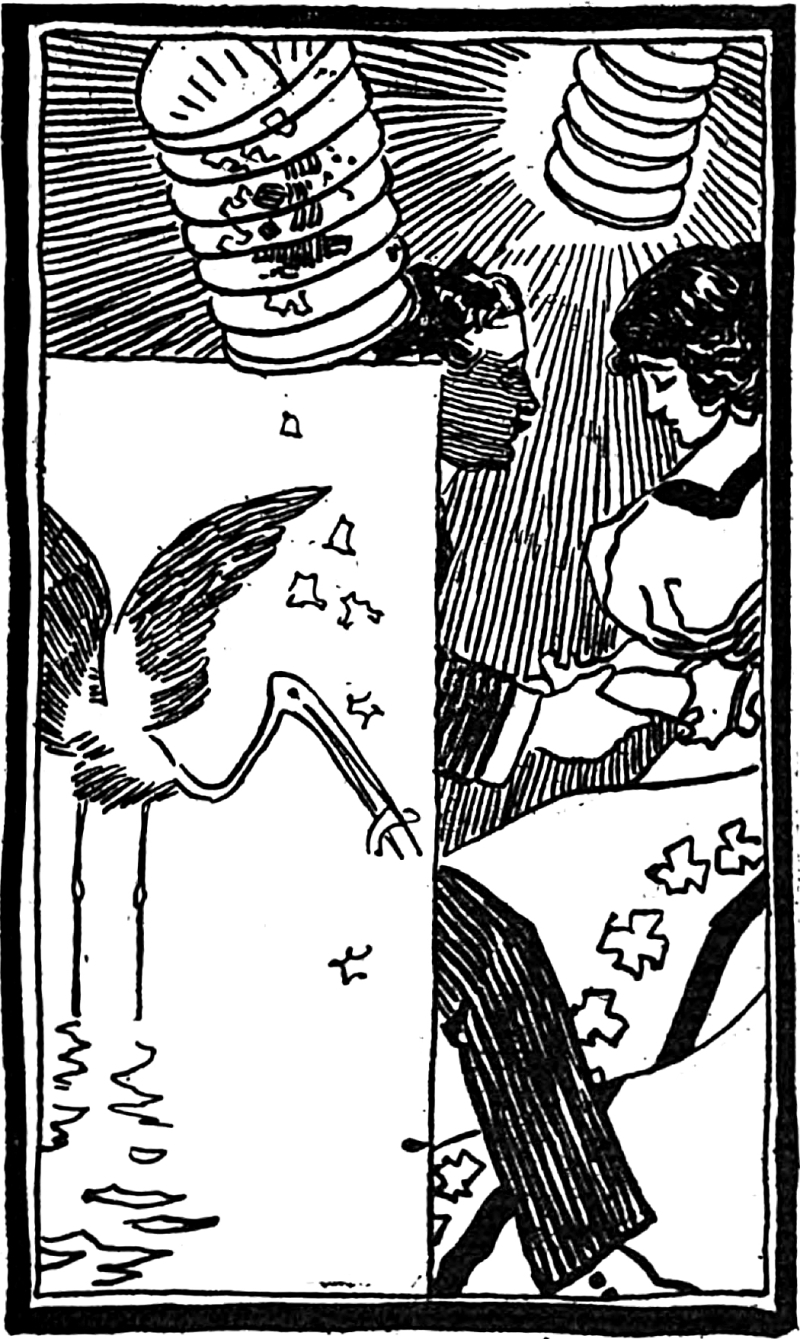 From Fables in Slang by George Ade and illustrated by Clyde J. Newman, 1899.  sdgr